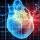 Ученые на шаг ближе к созданию 3D сердца!
