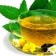 Зеленый чай и папайя могут предотвратить диабет